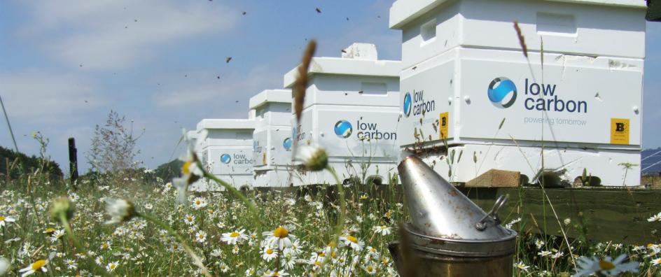 Low Carbon Hives